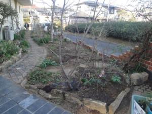 宿根草の整理・移動・植え付け