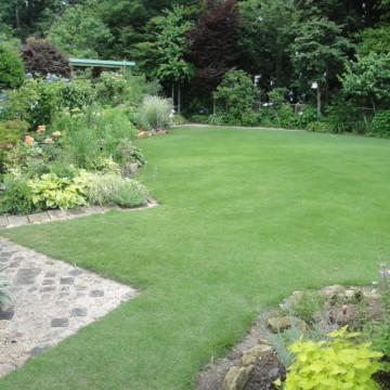 芝生と宿根草の庭